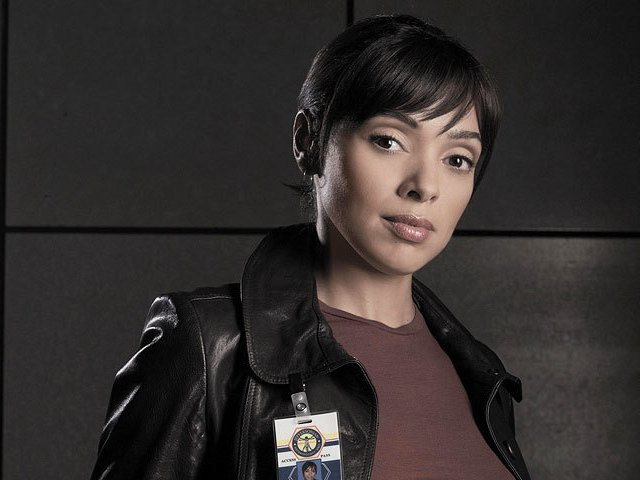 Tamara Taylor - Tamara Taylor (born September 27, 1970) is a Canadian television actress.Her most famous role is that of Dr. Camille Saroyan, head of the Forensic Division, on the forensic crime drama Bones. - , Celebrity, Tamara, Taylor, Canadian, television, actress, Dr., Camille, Saroyan, Forensic, Division, forensic, crime, drama, Bones - Play puzzles with Tamara Taylor or send Tamara Taylor puzzle ecards to your friends from puzzles-gallery.com! You can make your own puzzle, too..Tamara Taylor puzzle, puzzles, puzzles gallery, puzzle gallery, online puzzle gallery, puzzles-gallery.com, jigsaw puzzles, Tamara Taylor jigsaw puzzle, free puzzle games, free online puzzle games, Tamara Taylor free puzzle , Tamara Taylor online puzzle , jigsaw puzzle games, jigsaw puzzles games, Tamara Taylor puzzle ecard, Tamara Taylor puzzles ecards