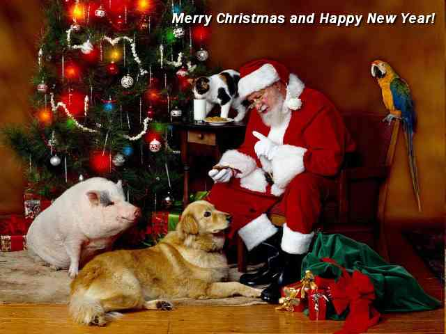 Christmas and Pets - Santa Claus giving Christmas gifts to Pets - , Santa, Claus, Christmas, gifts, Pets, greeting, greetings, ecard, ecards, holidays - Play puzzles with Christmas and Pets or send Christmas and Pets puzzle ecards to your friends from puzzles-gallery.com! You can make your own puzzle, too..Christmas and Pets puzzle, puzzles, puzzles gallery, puzzle gallery, online puzzle gallery, puzzles-gallery.com, jigsaw puzzles, Christmas and Pets jigsaw puzzle, free puzzle games, free online puzzle games, Christmas and Pets free puzzle , Christmas and Pets online puzzle , jigsaw puzzle games, jigsaw puzzles games, Christmas and Pets puzzle ecard, Christmas and Pets puzzles ecards
